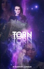 Torn | Endgame by Imaginary_Capable16