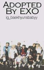 Adopted By EXO by ig_baekhyunsbabyy
