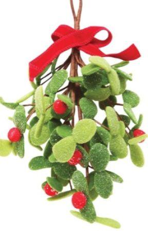 Under the mistletoe by aggressivelyfriendly