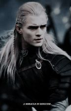 A MIRACLE IN DISGUISE, legolas greenleaf x reader by futuremcfly