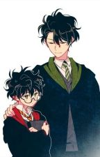 [Harry Potter đồng nhân] Trọng sinh chi Hogwarts (Phần 2) by vietanh2005