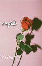 cupid ➱ svt by svtness