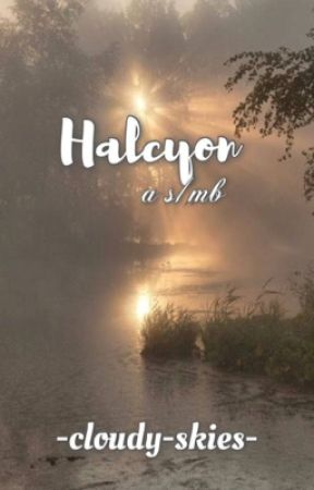〝 HALCYON 〞☀︎ a   s/mb     by -cloudy-skies-