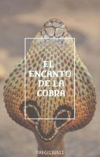El Encanto de la Cobra  EunHae  by TaeGi132511