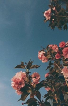 mi amore • jikook by jik00ktrash