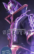 Shelter [Fortnite Fanfiction Book 1] [✔] by EgglordAkuizma