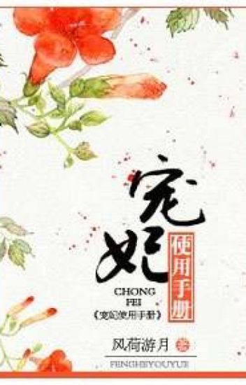 Chongfei Manual pt. 1