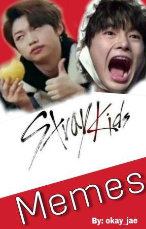 Stray Kids Memes by okay_jae