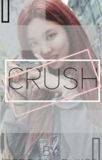 [Completed] Crush ¦ Nayeon×Female Reader by Zereign_Rui123