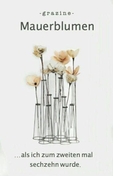 Mauerblumen by Grazine
