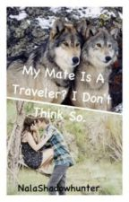 My mate, is a traveler? I don't think so. Sequel to 'I'm a rogue...' by NalaShadowhunter