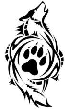De Witte Wolf (herschreven) by WhiteWolfMc