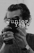 Junior Year / HS by Harrys_Space_Buns