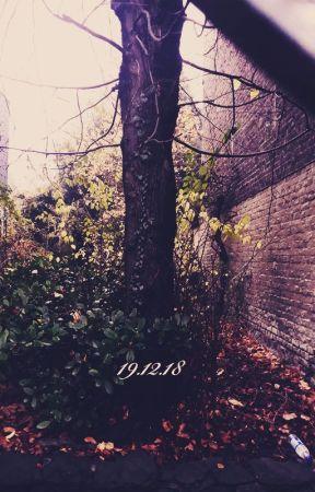 19.12.18 by CyrielleBandura