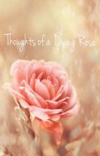 Thoughts of a Dying Rose by ButterflyFrost