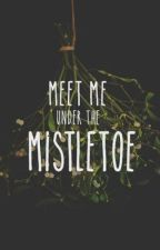 meet me under the mistletoe • nomin by dojaee