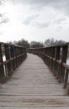 Şairler Köprüsü by MYusufAktekin