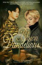 Blown Dandelions || ChanBaek || TRADUCCIÓN by ByunByul614