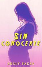 Sin conocerte by AryHeeza