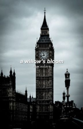 a willow's bloom | ✓ by macaulays