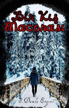 Bir Kış Macerası by sdamlaergenc