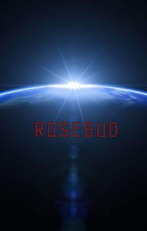 Rosebud by WillBillHill123