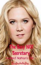 The Sexy NOT Secretary  by ArabellaRey