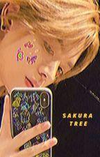 sakura tree    nakamoto yuta by hozeokz