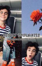 Secret Soulmates • Jack Grazer x Reader by jamescharlessisshook