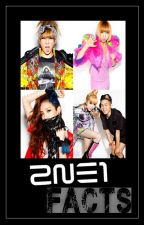 2ne1 FACTS ☆ by soshistan24