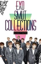 EXO SMUT COLLECTIONS [REQUESTS TEMP. CLOSE] by naughtyoppa