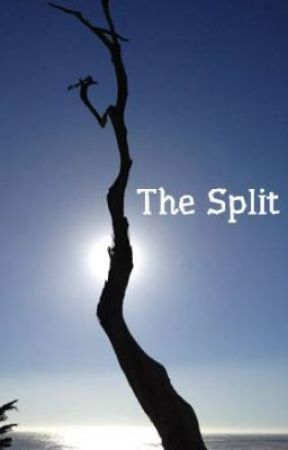 The Split by Jocelyn10917