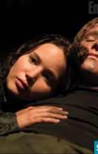 Katniss and Peeta Fan Fiction Alternate Ending by HollyMPEETASPEARL