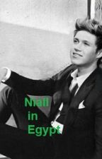 Niall in Egypt by Mariam_Ramzy