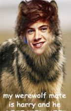 my werewolf mate is harry and he rejected me!!!!!!!!!:( by AmeliaRayn
