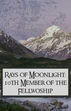 {DISCONTINUED} Rays of Moonlight: The 10th Member of the Fellowship by quinnn24601