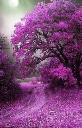Treecious by Dhikshithaperala