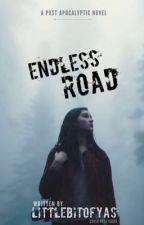 Endless Road by littlebitofyas