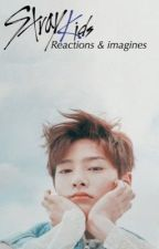 Stray Kids Reactions & Imagines (Requests open) by etherealnctzens