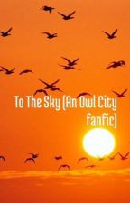 To The Sky  (An Owl City Fanfic) by ChasingRainbowsAlone