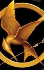 The Hunger Games: Blacklite District's version by DANGERDAVID12346