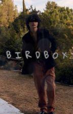 BIRDBOX ~ F.W by lokisad