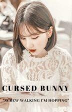CURSED BUNNY || J.EB・J.JK by TheLazyKpopper