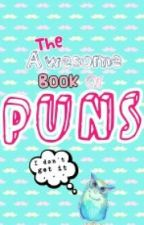 The Awesome Book Of Puns by PeaceLoveMusic1598