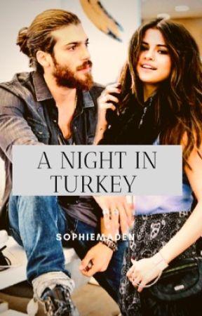 A Night in Turkey - Chapter 13 - Wattpad