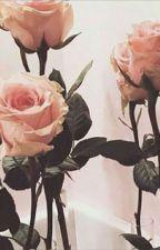 ♡Teach Me How Love Feels Like♡ ~VKOOK ~ by imasoftieforbts