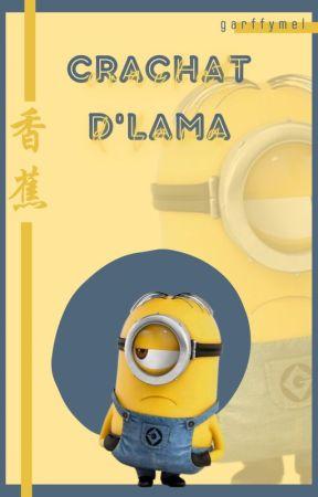 CRACHAT D'LAMA [OS/nouvelles] by Garffymel