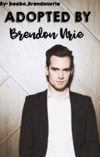Adopted by Brendon Urie by _beebos_forehead