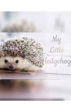 My little hedgehog (Larry Stylinson) (Completed) by keil-san