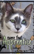 ✵ Name That Apprentice! ✵  by Echolight7